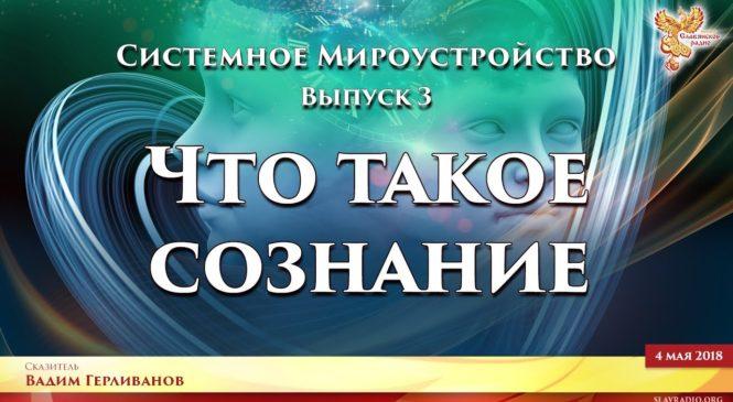 Что такое СОЗНАНИЕ. Системное Мироустройство. Вадим Герливанов. Выпуск 3.